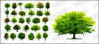 A number of trees vector material