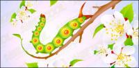 Flowers and insect vector material