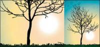 trees no leaves vector material