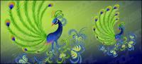 Peacock vector material