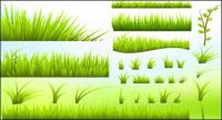 Green grass vector material