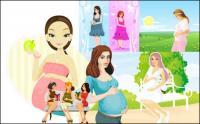 7 pregnant women, Vector