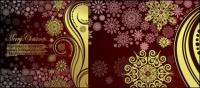 Pattern background - Vector