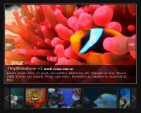 SlideShow Web Album code (JS + CSS)