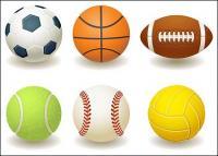 Football, basketball, rugby, tennis, baseball, volleyball vector material