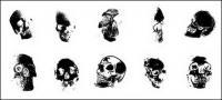 Go Media produced vector material - human skull