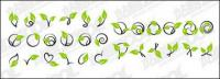 Vector rattan plant material