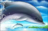 Cool jumping dolphins psd layered material