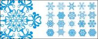 Number of exquisite snowflakes Vector