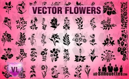 Vector flores