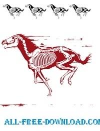 plantilla de caballo silueta skelett