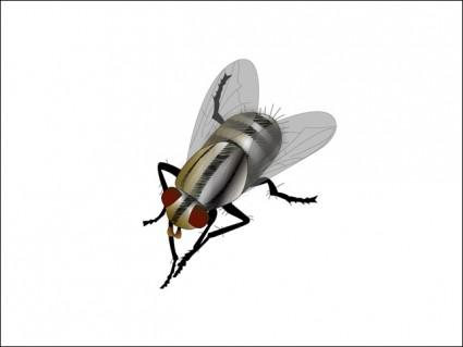 fly vector