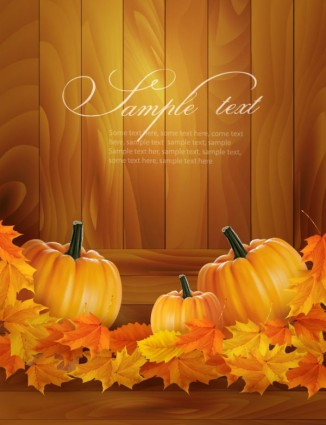 realistic pumpkin card vector