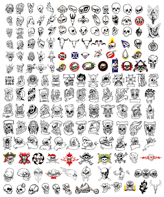the skeletons of various modeling material vector