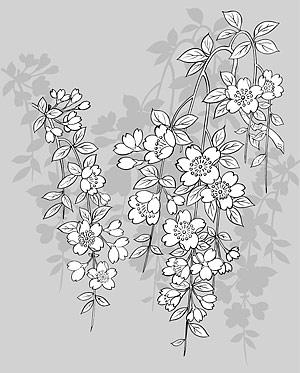 Vector line drawing of flowers-43(Sakura)