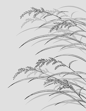 Line drawing of flowers -23