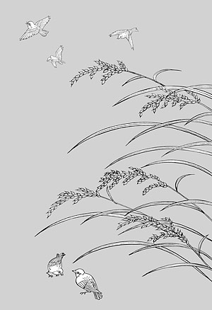 Vector line drawing of flowers-33(Rice, birds)