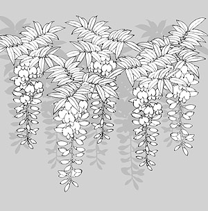 Line drawing of flowers -12