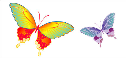 vector material Butterfly
