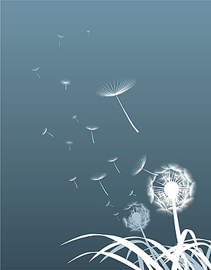 Dandelion silhouettes vector material