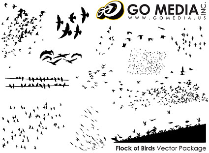 Go Media produced vector material - Birds in Pictures
