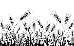 Wheat silhouettes vector material