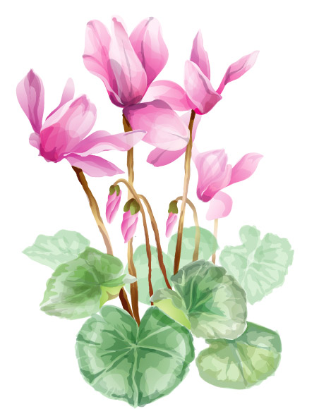 Elegant flower vector material