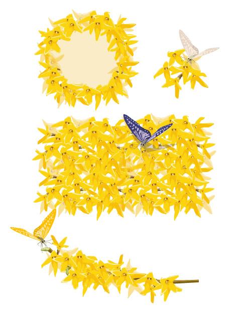 Golden yellow flowers and butterflies