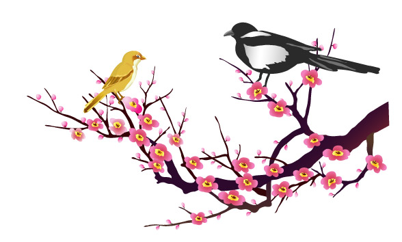 Classical auspicious vector of material - magpie map