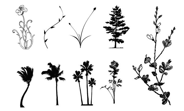 Trees, flowers, rattan vector case material