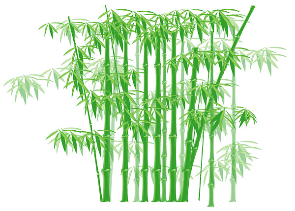 The green bamboo vector material