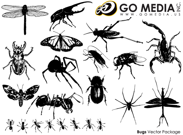 Go Media material produced vector - insect