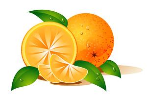 Oranges vector material