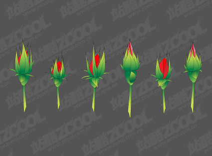 Rose Bud vector