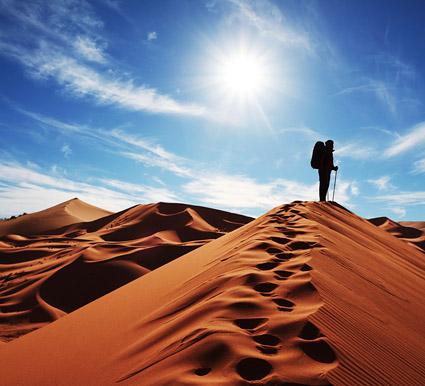 Walk the desert