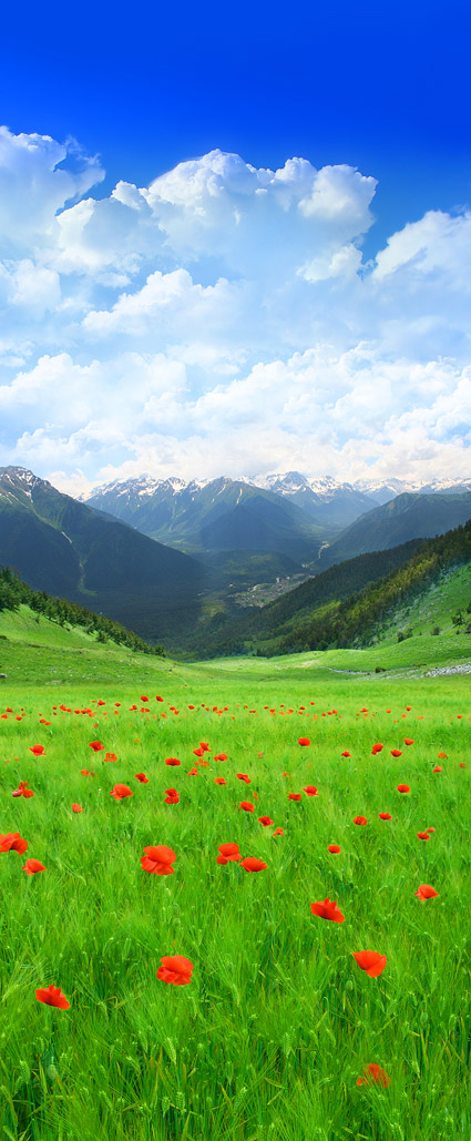 Beautiful countryside scenery picture material