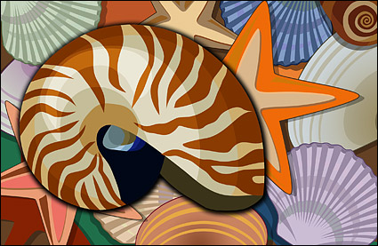 Conch, shells, starfish psd layered material