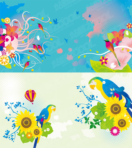 Colorful bird theme vector material