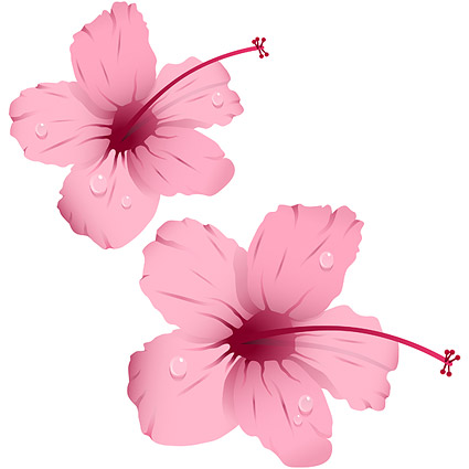 Water with pink flowers vector material