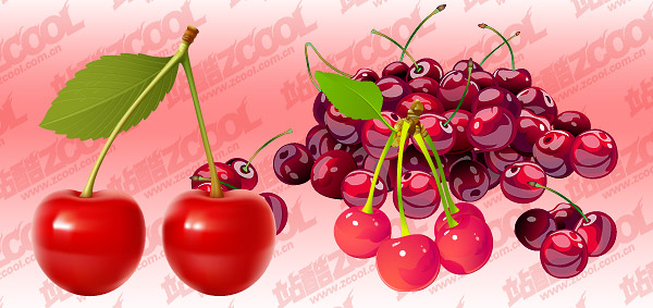 Cherry Vector fine material