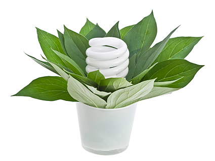 Green plants and energy-saving lamps picture material