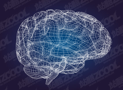 3D model of the brain-style vector material