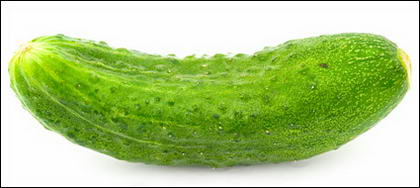 Cucumber picture material