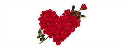 Rose petals composed of heart-shaped picture material