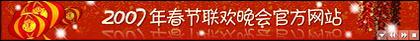 Slender-type flash banner ad code