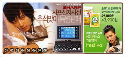 South Korea beautiful Flash-style advertising code