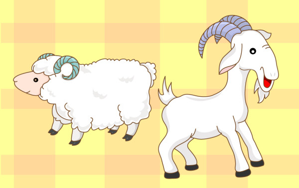 goats, sheep