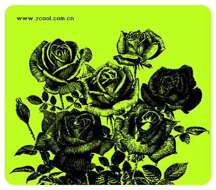 Pen painting style roses vector material