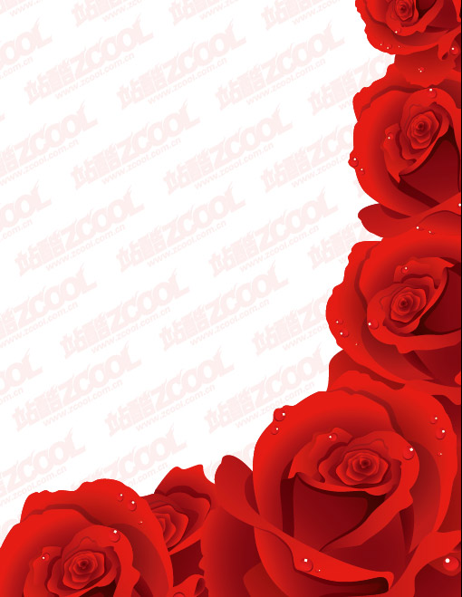 Exquisite red roses vector material