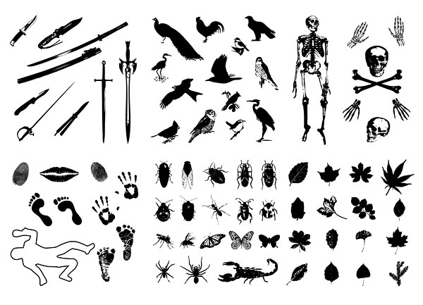 Swords, birds, skeletons, insects, leaves Vector